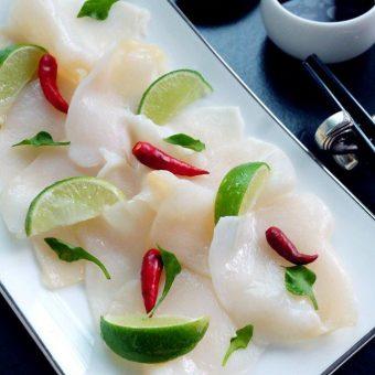 sea-conch-specials